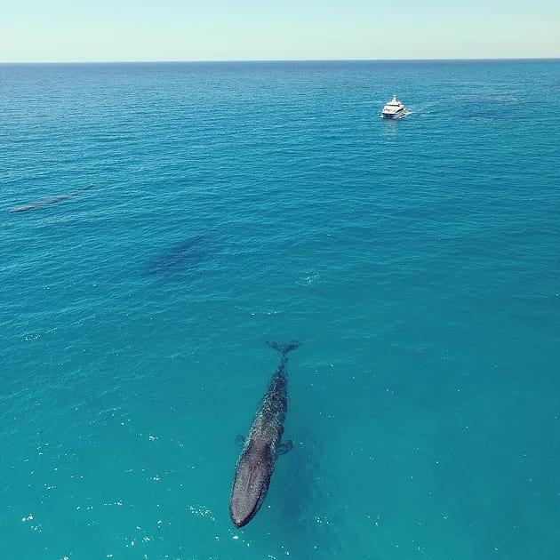 , GEOGRAPHE BAY in Busselton couldn't be more BLUE!